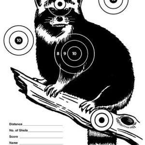 Fun Targets